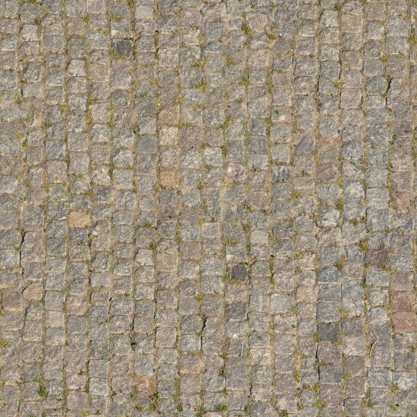 Seamless texture of small stones with uneven edges set in grey cement with some vegetation in  middot  uneven cobblestone. pavement textures   Texturelib