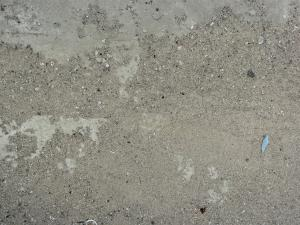 Concrete ground texture in light grey tone with very rough, crumbling surface and thin gravel.