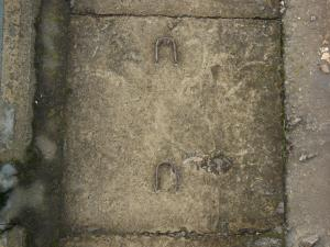 Ground of square, concrete blocks with iron bars and very rough, irregular surface.