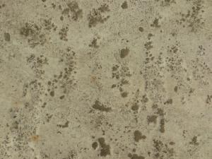 Concrete ground texture in light beige tone with rough surface and brown dirt spots throughout.