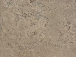 Concrete ground texture in beige and grey tones with rough, inconsistent surface and few, small cracks.