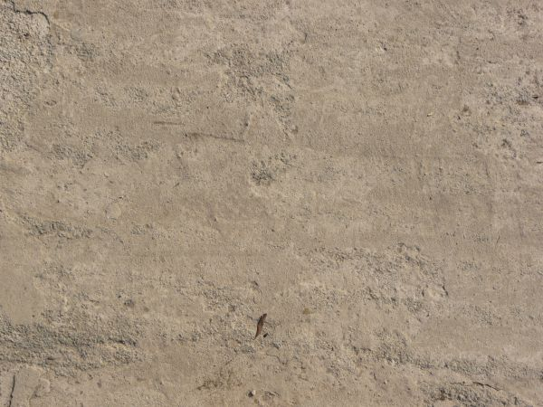 Pics Photos Texture Of Concrete Floor In Light Beige Color With