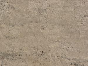 Concrete floor texture in light beige tone with slightly rough, worn consistency.