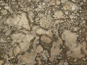 Ground of beige concrete with extremely damaged, crumbling consistency.