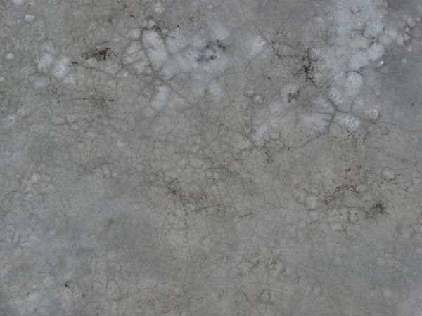 flat roof texture - photo #10
