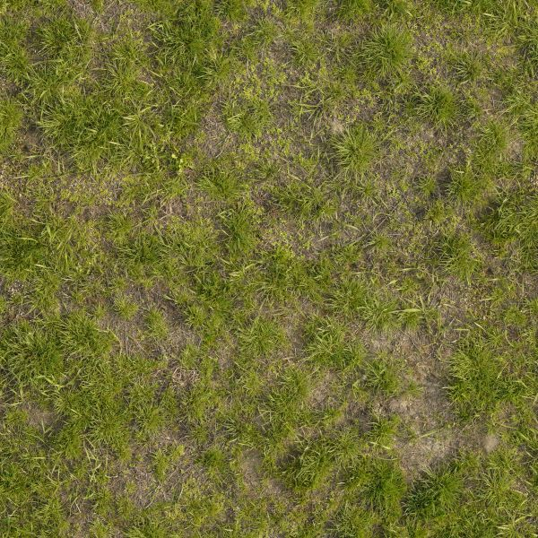 Texture consisting of inconsistent grass of varying types and lengths.