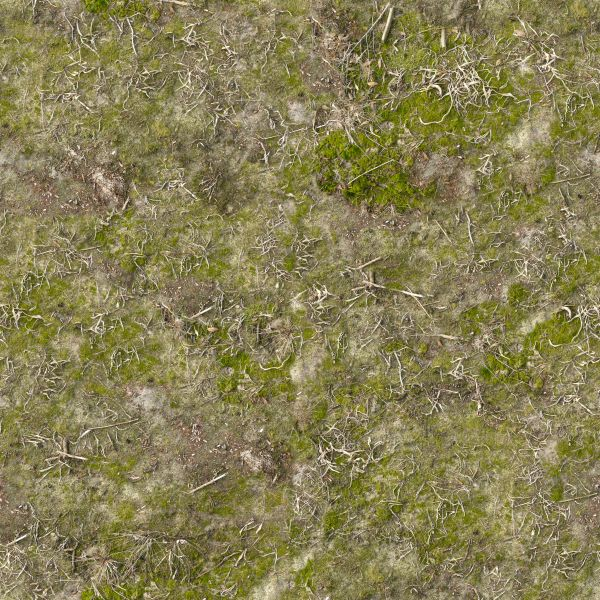 Bright green ground texture 0010 texturelib for Soil and green