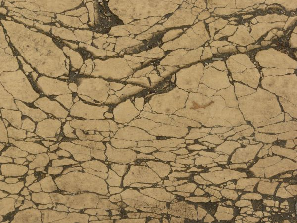 Concrete texture in beige color with myriads of cracks and dark dirt in  cracks. very cracked beige surface 0014   Texturelib