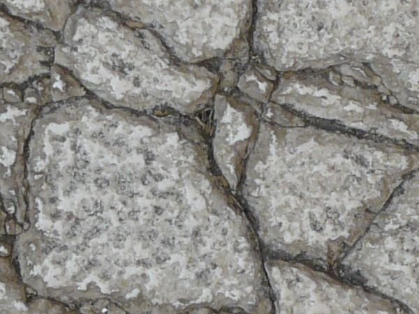 Cracked cement pathway with black tar in cracks and rough texture on surface.