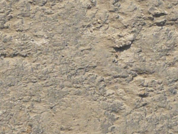 Road texture of asphalt covered in light beige dust and slightly rough, irregular surface.