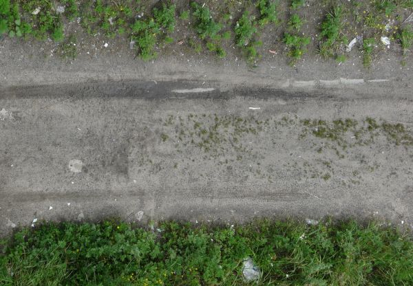 Texture of grey, dirt road with dark tire marks and some vegetation in center and at borders.