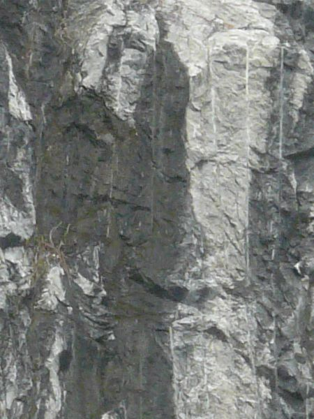 Texture of grey rock cliff with rough, uneven surface and myriads of black, vertical streaks.
