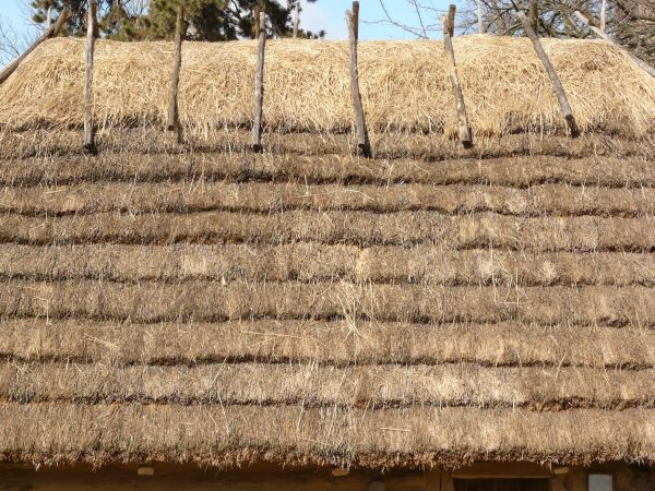 Sod And Straw Roofs Glorious Twelfth Making An Authentic