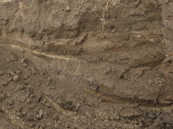 Dark brown ground texture made up of crumbling soil large for What makes up soil