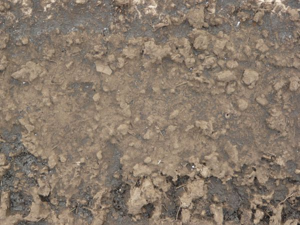 Brown mud texture, partially dried into large clumps and crumbling areas.