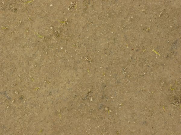 Sandy brown soil texture 0032 texturelib for Soil texture