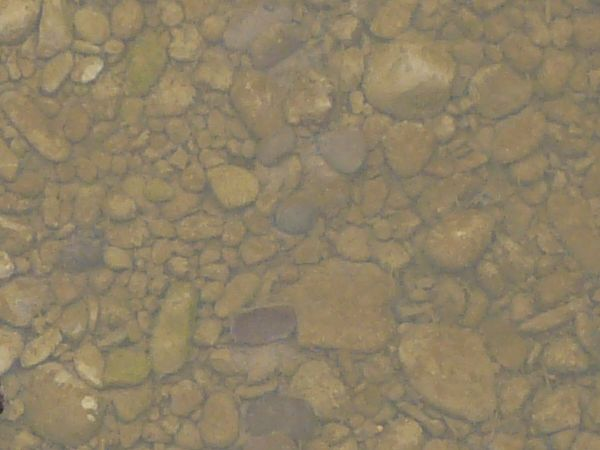 shallow water with rocks 0035 - Texturelib