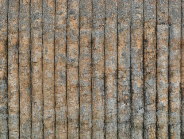 Worn Down Wooden Planks ~ Worn wooden plank texture texturelib