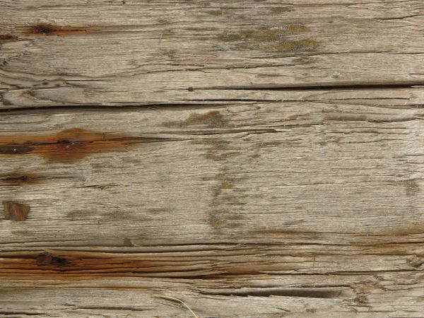 Stained White Wood Texture With Deep Cracks And Heavy Brown Rust Staining.