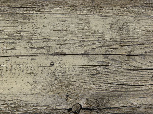 Old Grey Wood Texture With Deep Cracks, Covered With A Fading Layer Of White  Paint