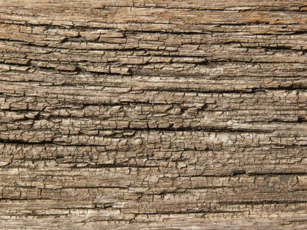 Rough Wood Planks ~ Rough wood plank texture imgkid the image kid